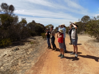 Tending the Tracks - Chingarrup Nature Reserve